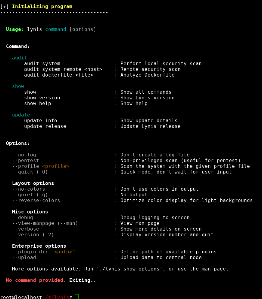 lynis-output